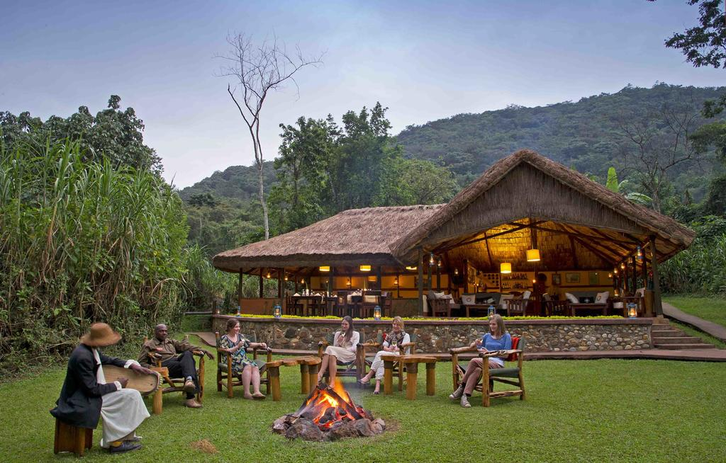 Unique hotel Sanctuary Gorilla Forest Camp, Uganda