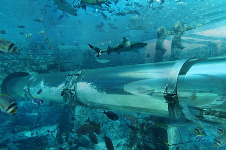 Unique Hotel Atlantis Underwater Suites3 United Arab Emirates