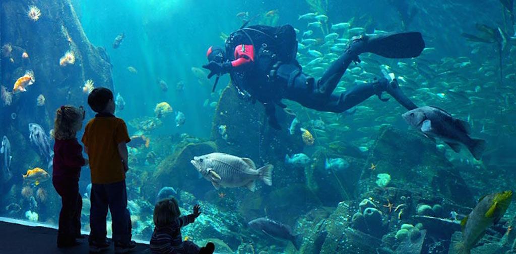 Unique Underwater Hotels Mostuniquehotels Com